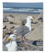 Seagull Bird Art Prints Coastal Beach Bandon Fleece Blanket