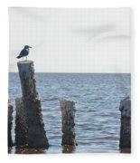 Seagull On A Post Fleece Blanket