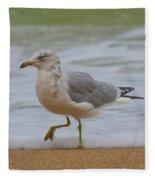 Seagull Stomp Fleece Blanket