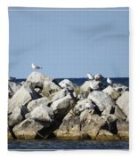 Seaguls On Boulders In Lake Erie Fleece Blanket