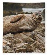 Seal Old Timers Fleece Blanket