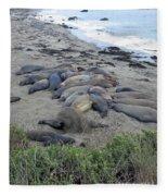 Seal Spa. Sand Bath Fleece Blanket