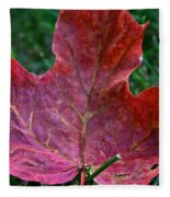 Seasonal Changes Fleece Blanket