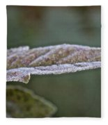 Seasonal Frost Fleece Blanket