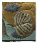Sem Of A Fruit Fly Mouth Fleece Blanket