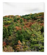 September Palate Fleece Blanket