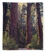 Sequoia National Park Fleece Blanket