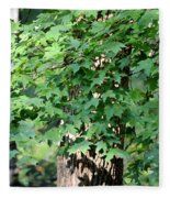 Shadows Of The Sweet Gum Fleece Blanket