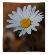 Shasta Daisies Fleece Blanket