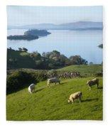 Sheep Grazing By Lough Corrib Cong Fleece Blanket
