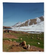 Sheep In The Atlas Mountains 02 Fleece Blanket
