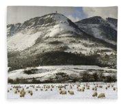 Sheep In The Snow Fleece Blanket