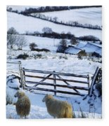 Sheep, Ireland Sheep And A Farm During Fleece Blanket