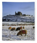 Sheep On A Snow Covered Landscape In Fleece Blanket