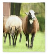 Sheep On The Run Fleece Blanket