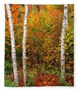 Shelburne Birches 2 Fleece Blanket