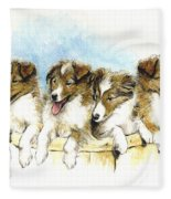 Sheltie Pups Fleece Blanket