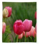 Sherbert Color Tulips Fleece Blanket