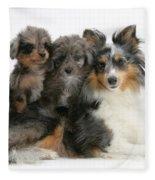 Shetland Sheepdog With Puppies Fleece Blanket