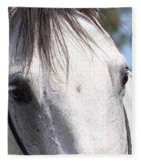 Show Horse At Mule Days Fleece Blanket