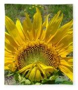 Shy Sunflower Fleece Blanket