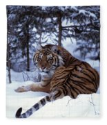 Siberian Tiger Lying On Mound Of Snow Fleece Blanket