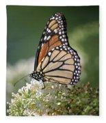 Side Profile Of A Monarch Fleece Blanket
