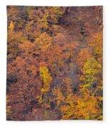 Sierra Nevada National Park Fleece Blanket