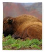 Siesta Fleece Blanket