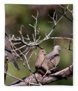 Siesta Time - Mourning Dove Fleece Blanket