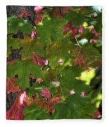 Signs Of Autumn  Fleece Blanket