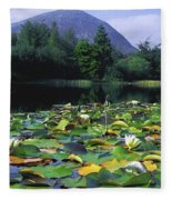 Silent Valley, Mourne Mountains Fleece Blanket