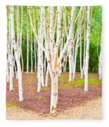 Silver Birch Trees Fleece Blanket