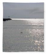 Silver Fleece Blanket