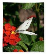 Silver Moth Fleece Blanket