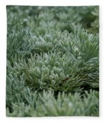 Silver Mound Dew Drenched Fleece Blanket
