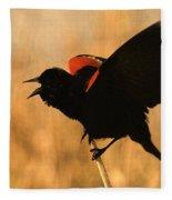 Singing At Sunset Fleece Blanket