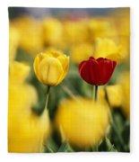 Single Red Tulip Among Yellow Tulips Fleece Blanket