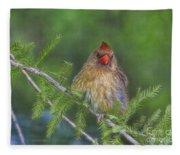 Sitting In The Cedar Fleece Blanket
