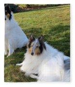 Sitting Pretty Collie Dogs Fleece Blanket