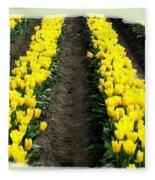Skagit Valley Tulips 2 Fleece Blanket