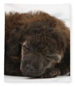 Sleeping Puppy Fleece Blanket