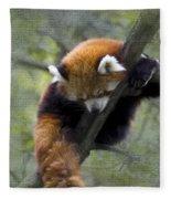 sleeping Small Panda Fleece Blanket