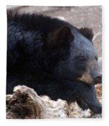Sleepy Black Bear Fleece Blanket
