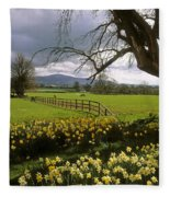 Slievenamon, Ardsallagh, Co Tipperary Fleece Blanket