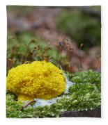 Slime Mould Fleece Blanket