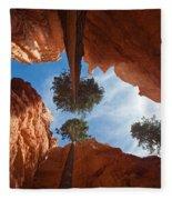 Slot Canyon Fleece Blanket