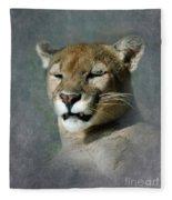 Slumbering Mountain Lion Fleece Blanket