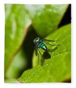 Small Green Fly Fleece Blanket