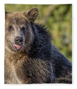 Smiling Grizzly Fleece Blanket